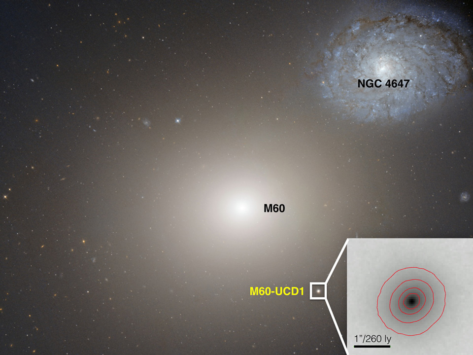 huge-galaxy-m60-interacting