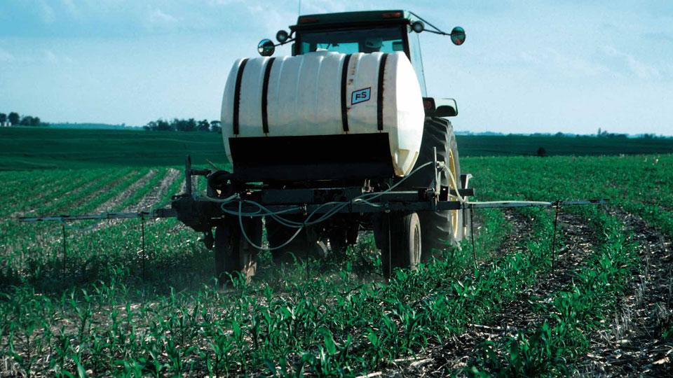 Phosphorus-and-Nitrogen-Fertilizers-Could-Destroy-Planet