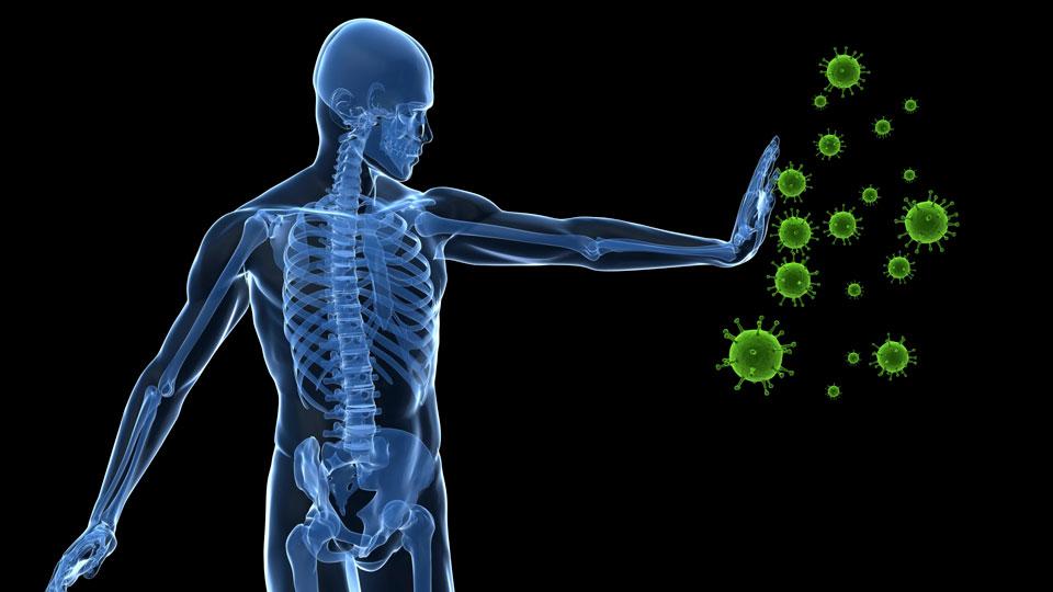 not-Genes-Environment-Influences-Immune-System