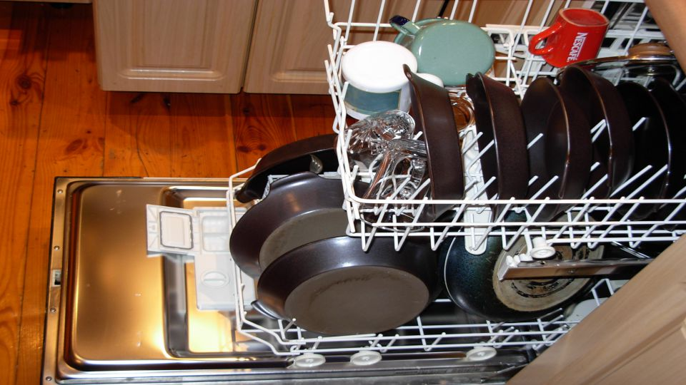 Dishwasher Risk.JPG
