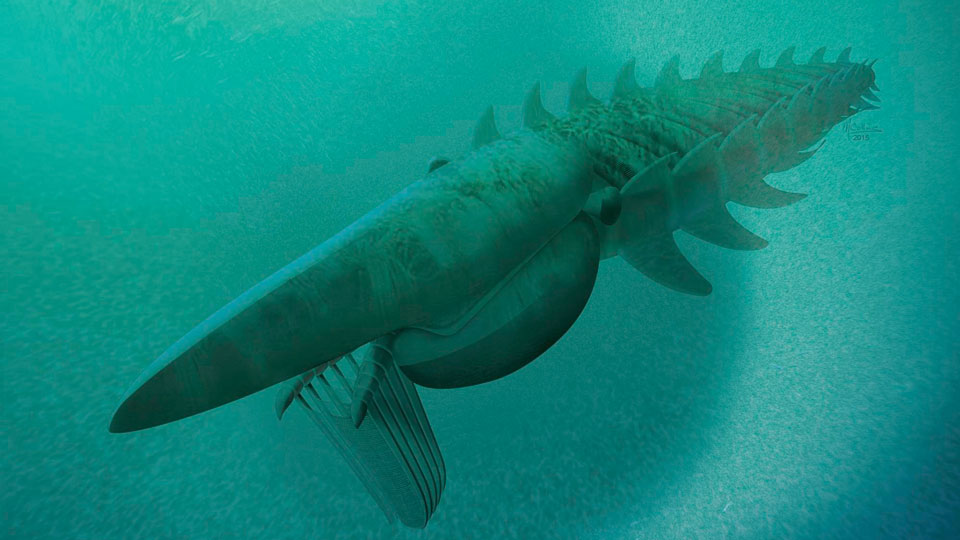 Fossil-of-Ancient-7-Ft-Long-Arthropod-Discovered