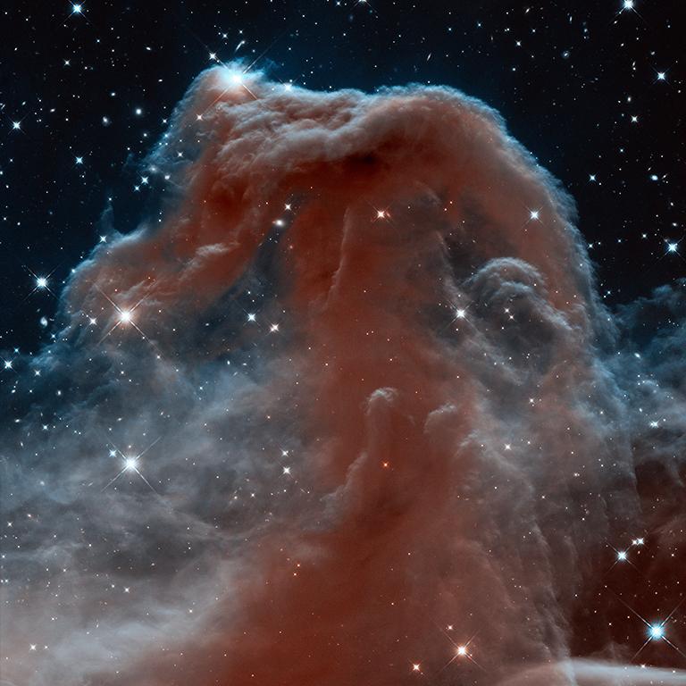 horsehead-nebula-hst-25th-anniversary