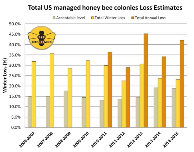 Summary of the total colony losses overwinter (October 1 – April 1) and over the year (April 1 – April 1) of managed honey bee colonies in the United States. The acceptable range is the average percentage of acceptable colony losses declared by the survey participants in each of the nine years of the survey. Winter and Annual losses are calculated based on different respondent pools. Credit : Beeinformed