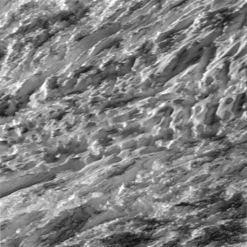 Enceladus-surface