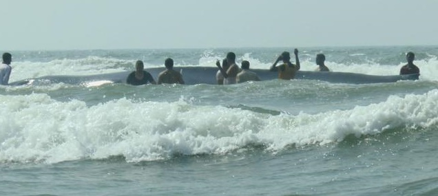 Dapoli coast whale