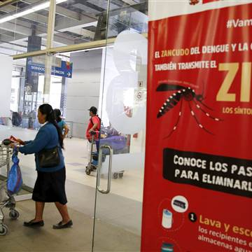 WHO Cautions Pregnant Women on Travel to Zika Zones