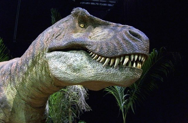 pregnant T.Rex