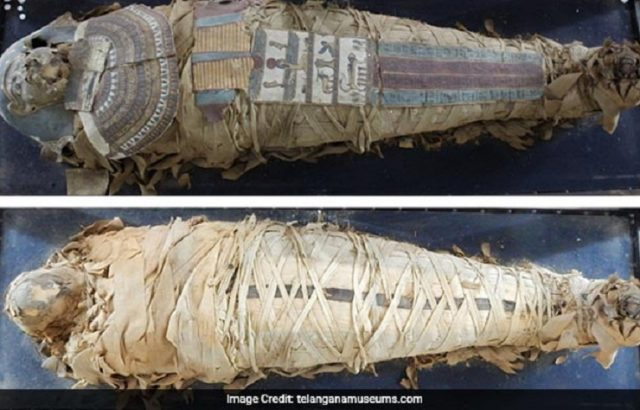 2000 year old mummy scan reveals parts of brain still intact