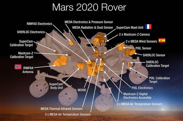 nasa life hunting rover